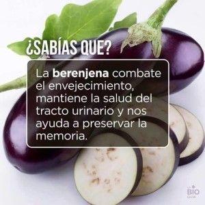 beneficios de la Berenjena para bajar la grasa