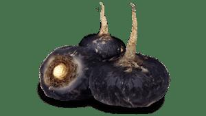 maca negra erectmax